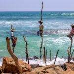 vissers, op stok