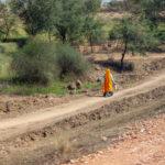 vrouw, wandelen, landschap