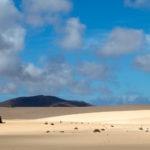 duinen, bergen,fuerteventura