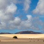 duinen, bergen, fuerteventura